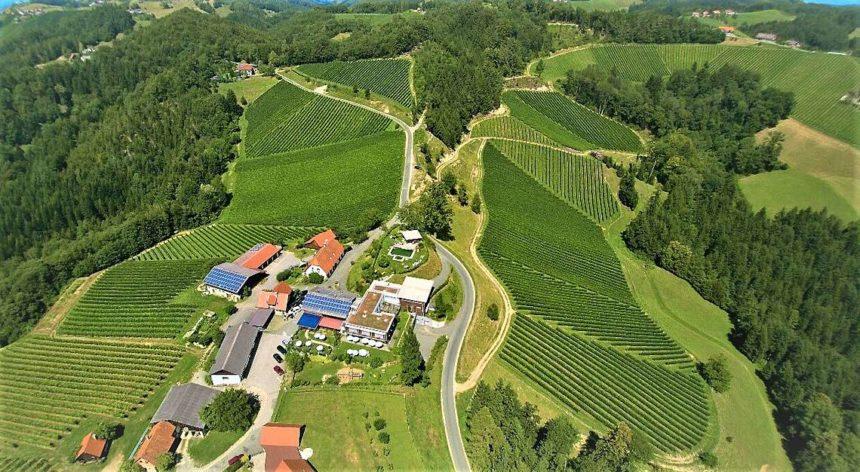 Weinbau Kollerhof-Lieleg